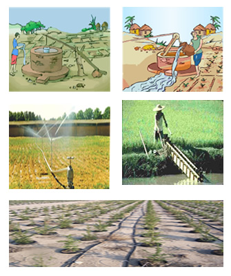 Crop Production And Management Cbse Science Class 8