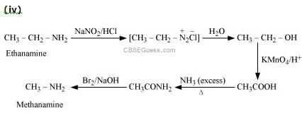 Cbse Chemistry Amines With Solution By Mr Manish Tuli Class Xii