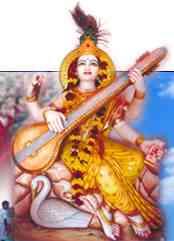 maheshwari-vidyapeeth
